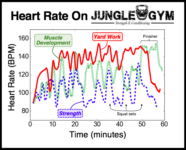 How Jungle Gym Keeps Your Body Guessing and Adapting to Improve – A Heart Rate Study